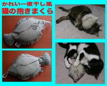 のらデジのブログ-karei